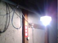 明日からいよいよ酒造りが始まります!むろの前の電球です。